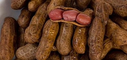 how to ship boiled-peanuts