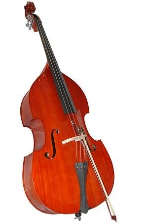 Ship a double bass