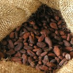 How to Ship Cocoa Beans