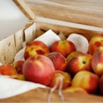 7 Important Tips on Shipping Fresh Peaches