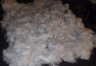 Ship Raw Fleece