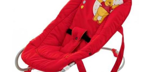 Ship a Baby Bouncer